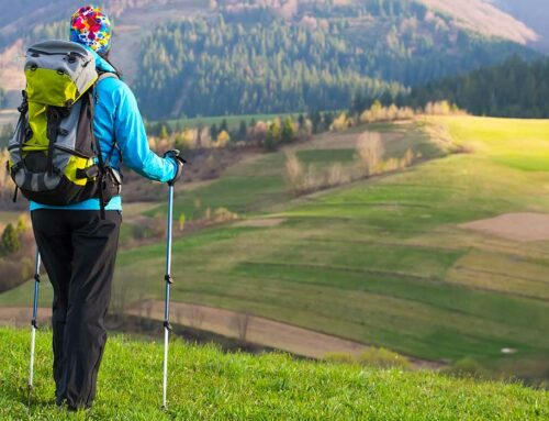 How to Choose the Best Walking Poles